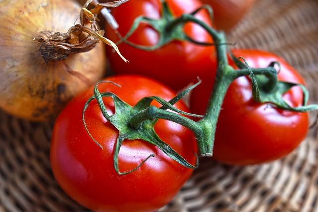 ekologiczne bio pomidory