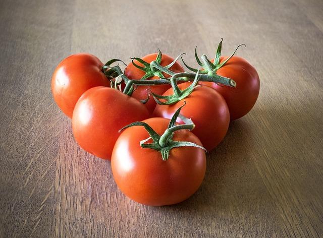 organiczne jedzenie pomidorki